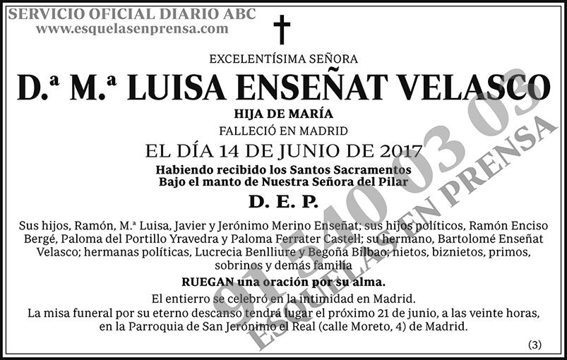 M.ª Luisa Enseñat Velasco